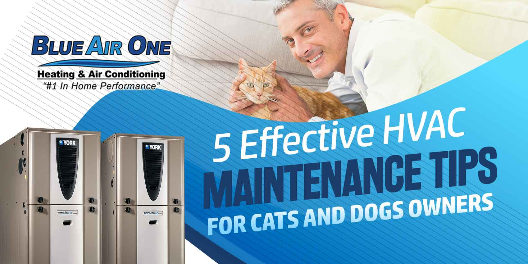 5 Effective HVAC Maintenance Tips for Cats and Dogs Owners