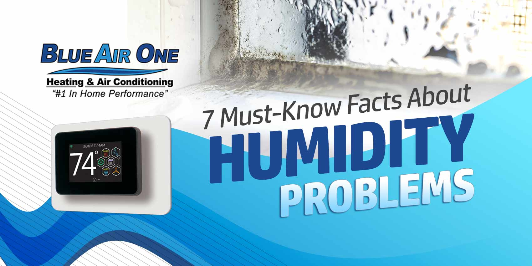 7 MustKnow Facts About Humidity Problems