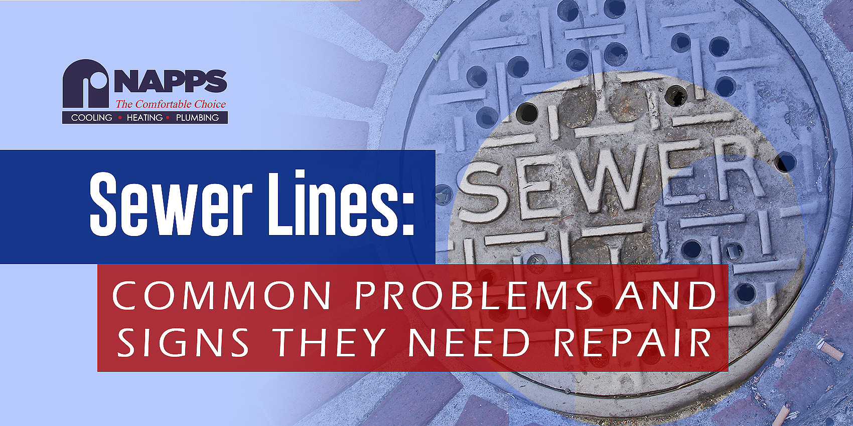 Sewer Lines: Common Problems and Signs They Need Repair